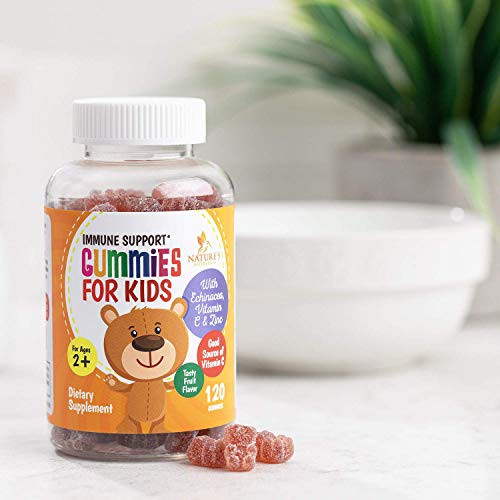 Kids Immune Support Gummies with Vitamin C, Echinacea and