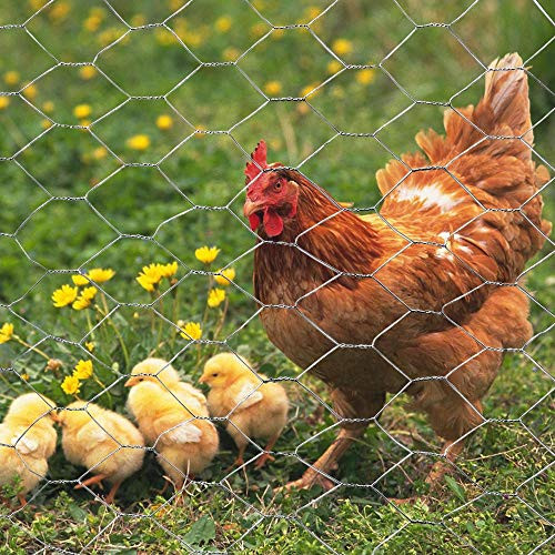 MTB Galvanized Hexagonal Poultry Netting Chicken Wire 72quot