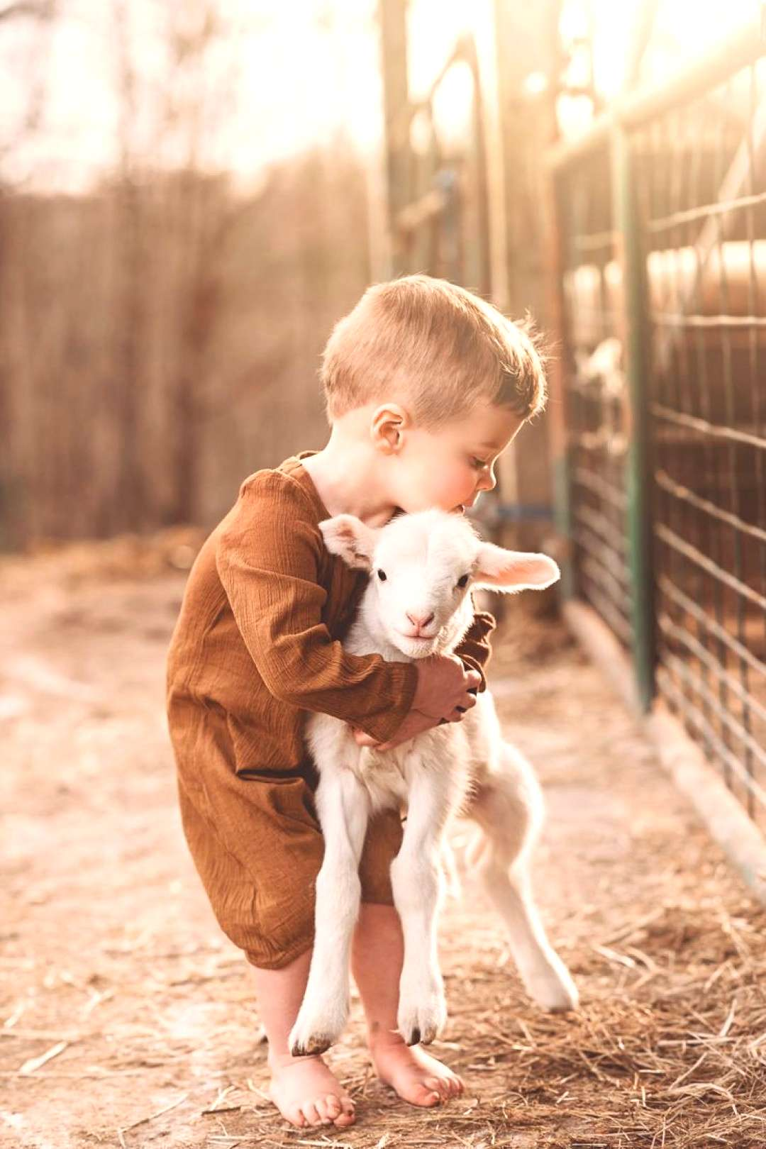 Spring pictures for boys and lambs, pictures from the farm, childhood and home ... - Spring pictur